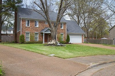 Collierville Single Family Home For Sale: 576 King Ridge