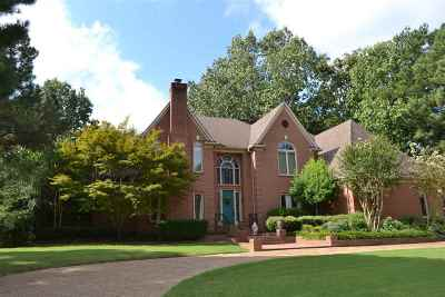 Germantown Single Family Home For Sale: 9591 S Spring Hollow