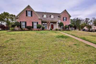 Cordova TN Single Family Home Contingent: $237,000