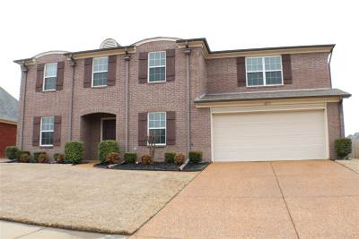 Olive Branch Single Family Home For Sale: 6272 Asbury