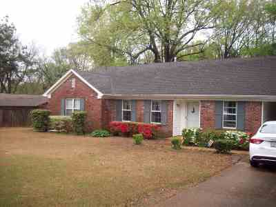 Collierville Single Family Home Contingent: 415 Starling