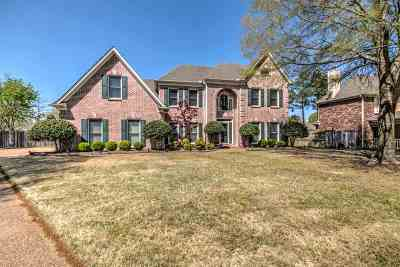 Collierville Single Family Home Contingent: 982 Handforth