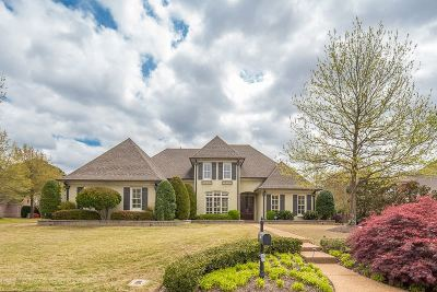 Collierville Single Family Home Contingent: 1695 Lovejoy