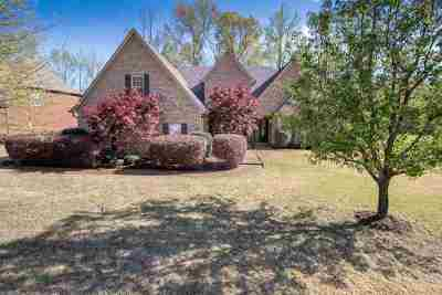 Southaven Single Family Home For Sale: 1909 S Gilless