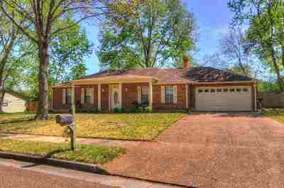 Collierville Single Family Home For Sale: 349 Fletcher Hollow