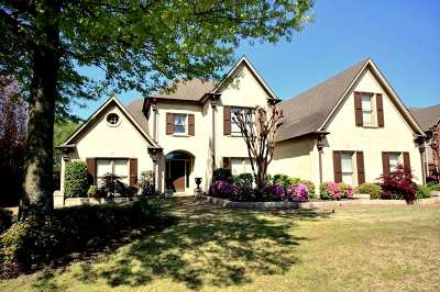 Collierville Single Family Home For Sale: 755 Green Oaks