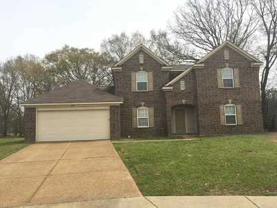 Bartlett Rental For Rent: 5150 Misty River