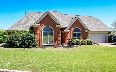 Memphis TN Single Family Home For Sale: $218,000