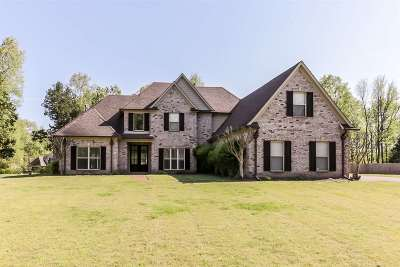 Nesbit Single Family Home For Sale: 3271 Nikki Lakes