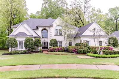 Collierville Single Family Home For Sale: 3384 Brooke Edge