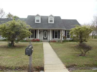 Ripley Single Family Home For Sale: 46 Village