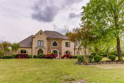 Collierville Single Family Home For Sale: 2446 Logwood Briar