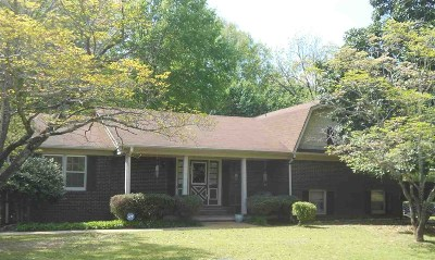 Savannah Single Family Home For Sale: 545 Patterson