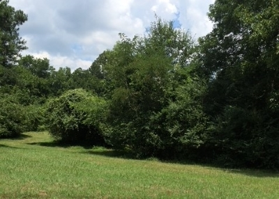 Collierville Residential Lots & Land For Sale: Collierville-Arlington