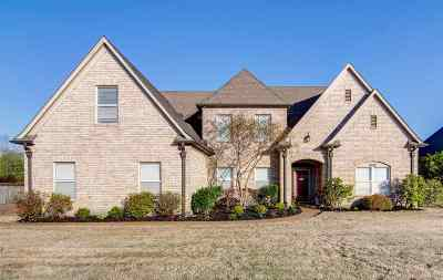 Lakeland Single Family Home Contingent: 9298 Laurel Hill