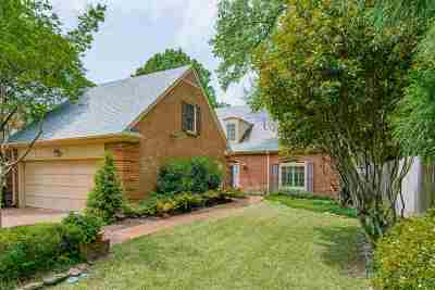 Memphis Single Family Home Contingent: 295 Inkberry