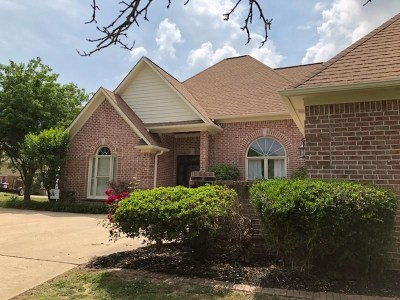 Munford Single Family Home For Sale: 87 James Drew