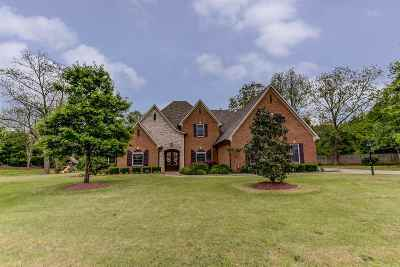 Olive Branch Single Family Home For Sale: 8925 Dehart