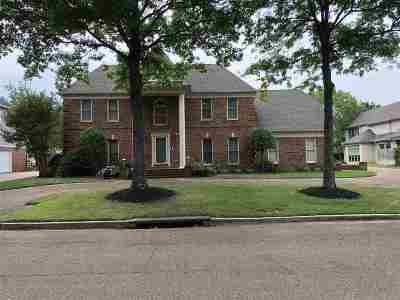 Collierville Condo/Townhouse For Sale: 10289 Peyton Path
