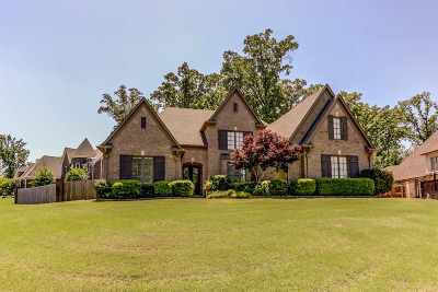 Collierville Single Family Home Contingent: 1073 E Old Hearthstone