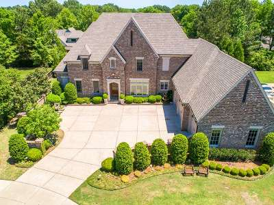 Collierville Single Family Home For Sale: 10091 Bushrod