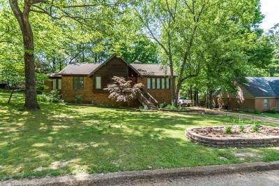 Germantown Single Family Home For Sale: 2491 Turpins Glen