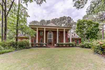 Memphis Single Family Home For Sale: 336 Bluffside