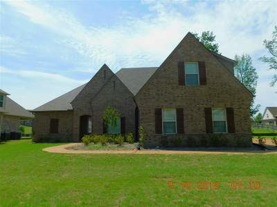 Bartlett Single Family Home For Sale: 6099 Trail Creek