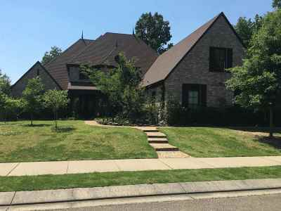 Collierville Single Family Home For Sale: 729 Windsor Hill