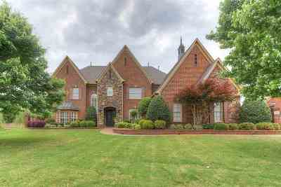 Collierville Single Family Home Contingent: 1115 Fall Springs