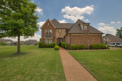 Millington Single Family Home For Sale: 7170 Alexander Hill