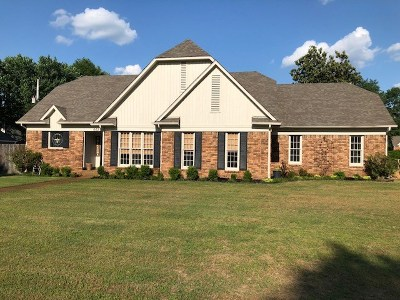 Collierville Single Family Home For Sale: 662 Rhetts