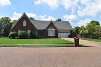 Collierville Single Family Home For Sale: 539 Tara Oaks