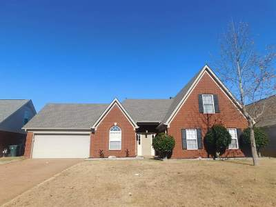 Bartlett Rental For Rent: 8160 Blue Lagoon