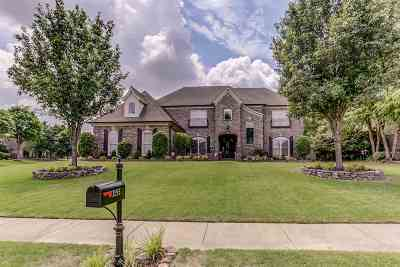 Collierville Single Family Home Contingent: 1155 Cypress Wells