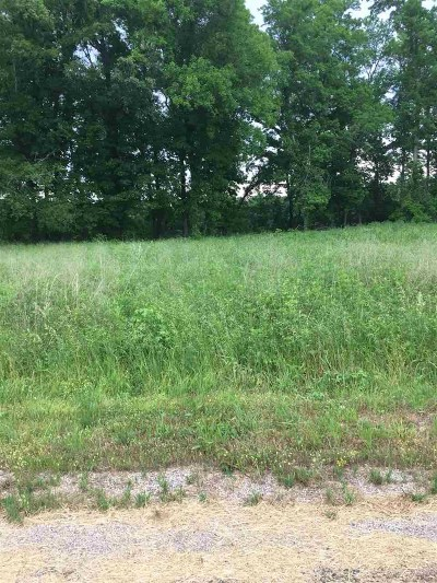 Residential Lots & Land For Sale: 00 Tennessee River