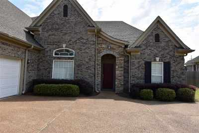 Southaven Single Family Home For Sale: 3326 Mountain Ash