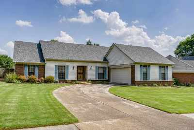 Lakeland Single Family Home For Sale: 9277 Curling Pond