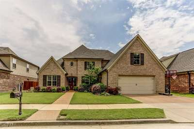Collierville Single Family Home Contingent: 203 Red Sea #147