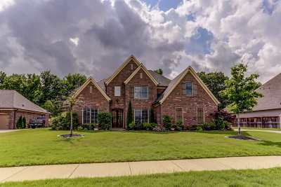 Collierville Single Family Home For Sale: 1719 Amber Grove