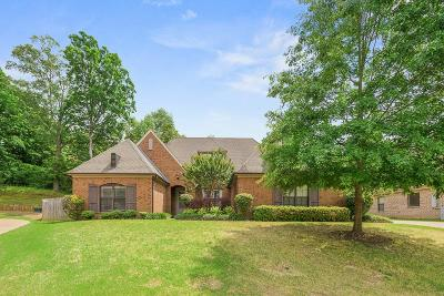 Bartlett Single Family Home For Sale: 8361 Hunters Meadow