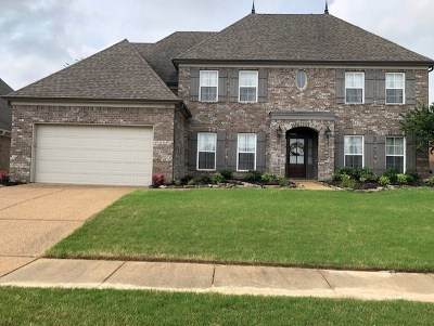 Olive Branch Single Family Home For Sale: 6117 Coleman