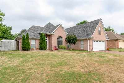 Olive Branch TN Single Family Home Contingent: $185,000