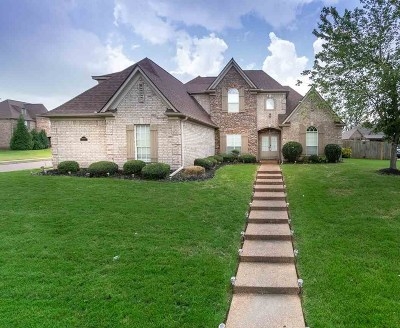 Bartlett Single Family Home For Sale: 6183 Bending River