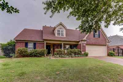 Arlington Single Family Home For Sale: 11791 McAuley