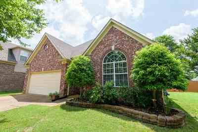 Collierville Single Family Home Contingent: 10509 S Ashglen