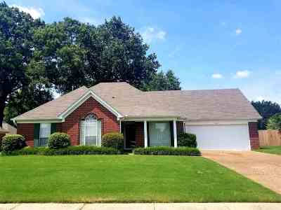 Bartlett Single Family Home For Sale: 7420 Drew Valley