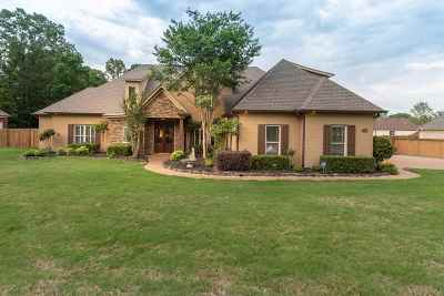 Southaven Single Family Home For Sale: 4182 Weladay