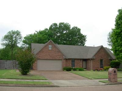 Bartlett Single Family Home For Sale: 4045 Meadow Field