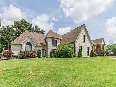 Germantown Single Family Home For Sale: 8864 Three Chimneys